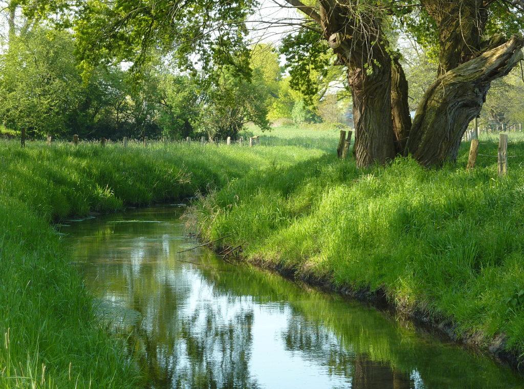 Landschaft in Neukirchen-Vluyn