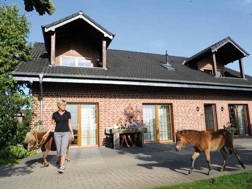 Bauernhof_500x375