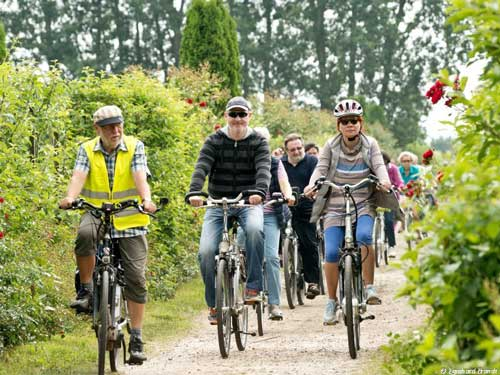 Wesel_geführte-Radtour_Foto-Eginhard-Brandt_Quelle-WeselMarketing_500x375_
